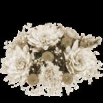 Сухие цветы в доме – примета