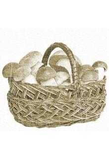много грибов в корзинке